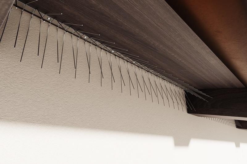 Schwalben-Spitzen 1m lang, Spitzen 1.6 mm stark (Federdraht) 140 und 110 mm lang aus Edelstahl Rostfrei
