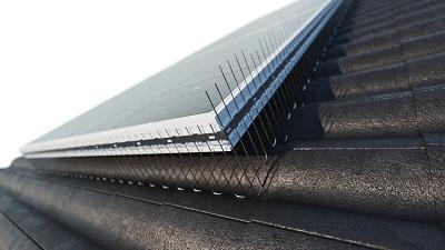TAS 1er Solarspitzen 1 m lang, 2.0 mm stark, verstellbare Spikes aus Edelstahl Rostfrei