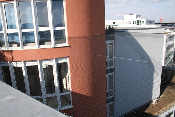 TAN Polyäthylennetz schwarz Maschenweite 50x50 mm, Garnstärke 1 mm, Standardnetze